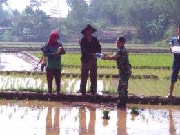 Bantuan Pestisida