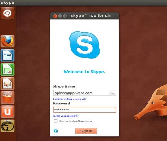 skype_06