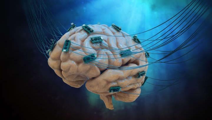 """internet cerebro02 720x408 - CÉREBROS VIVOS COMO PROCESSADORES: Conheça a polêmica internet """"telepática"""" que propõe ligar cérebros humanos : VEJA VÍDEO"""