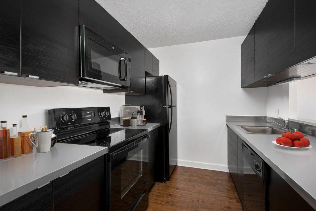 1133 N Dearborn Kitchen Interior Chicago Apartments Gold Coast - 5
