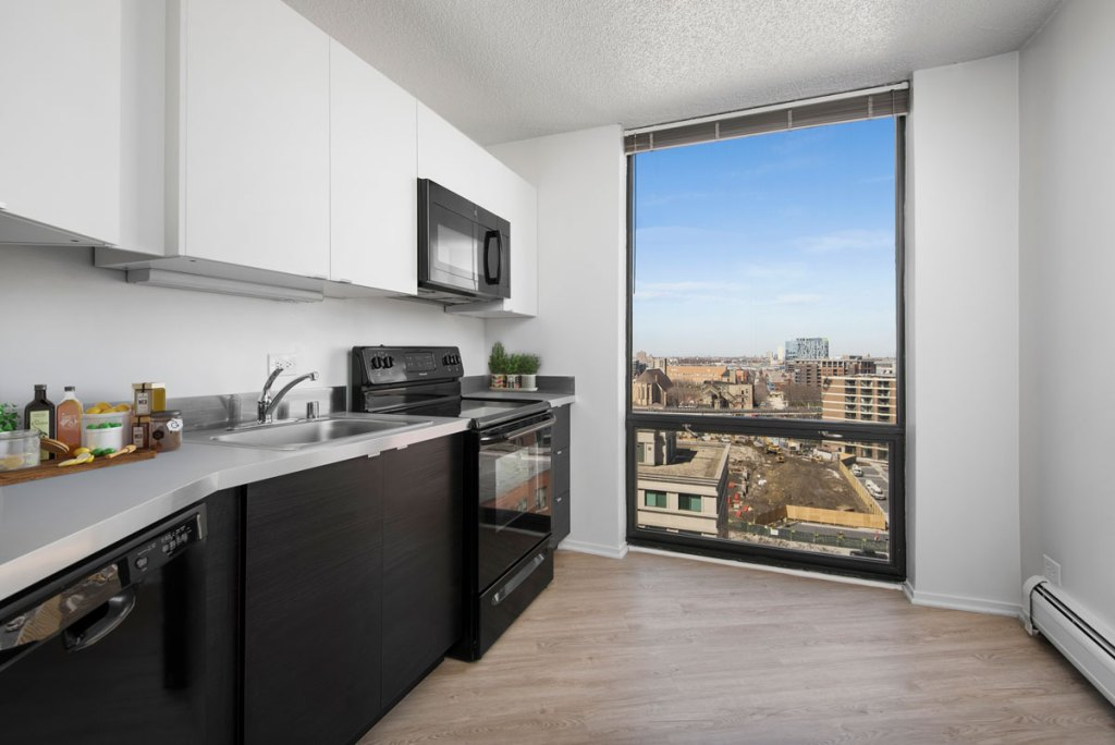 1120 N LaSalle Kitchen with View Interior Chicago Apartments Gold Coast - 1
