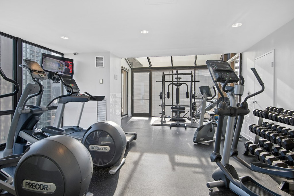 1120 N LaSalle Fitness Center Interior Chicago Apartments Gold Coast - 1