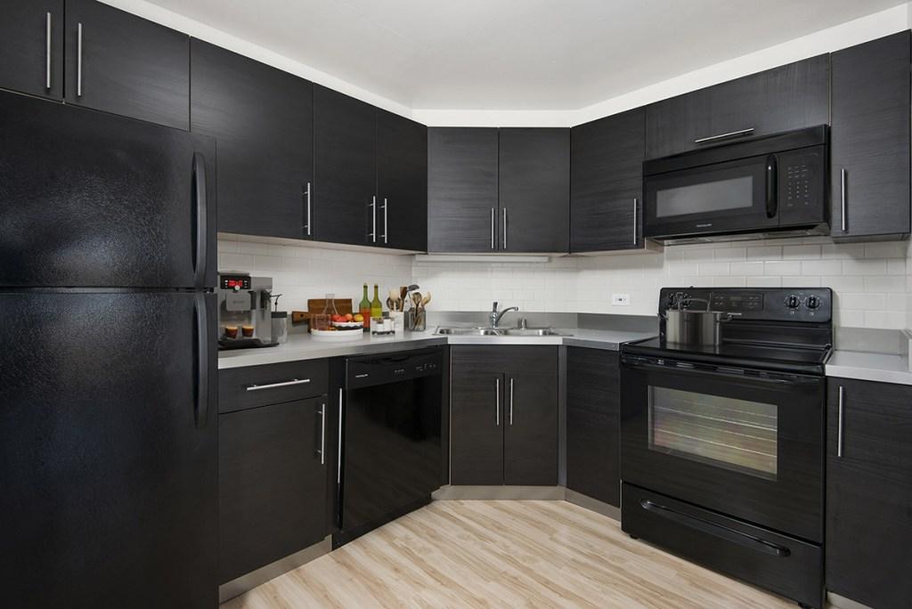 1120 N LaSalle Kitchen Interior Chicago Apartments Gold Coast - 6