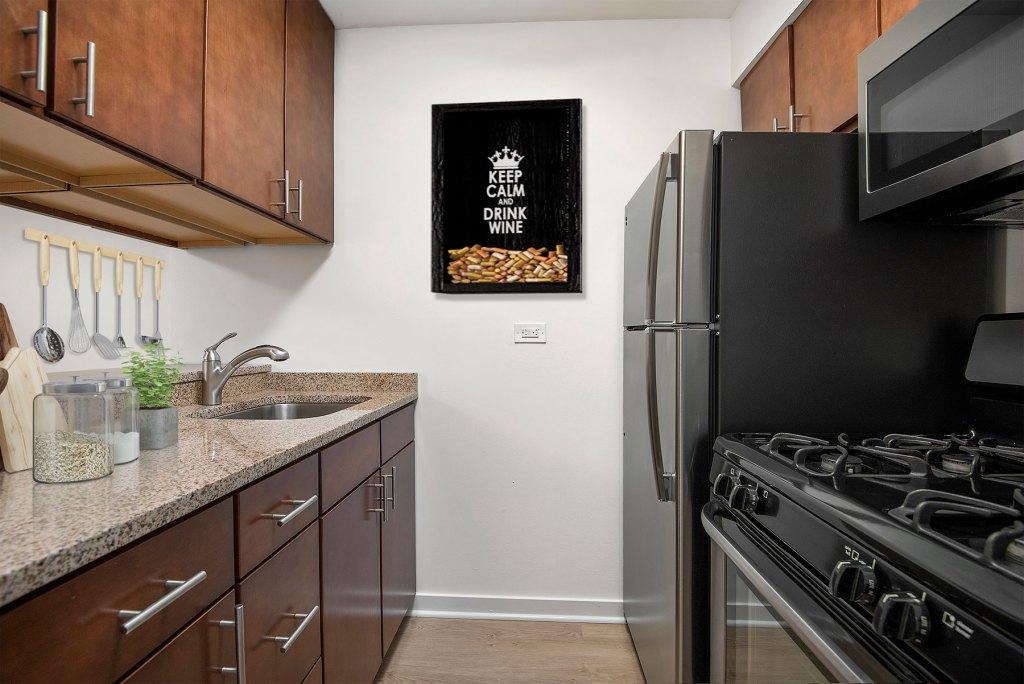 20 E Scott Kitchen Interior Chicago Apartments Gold Coast - 4