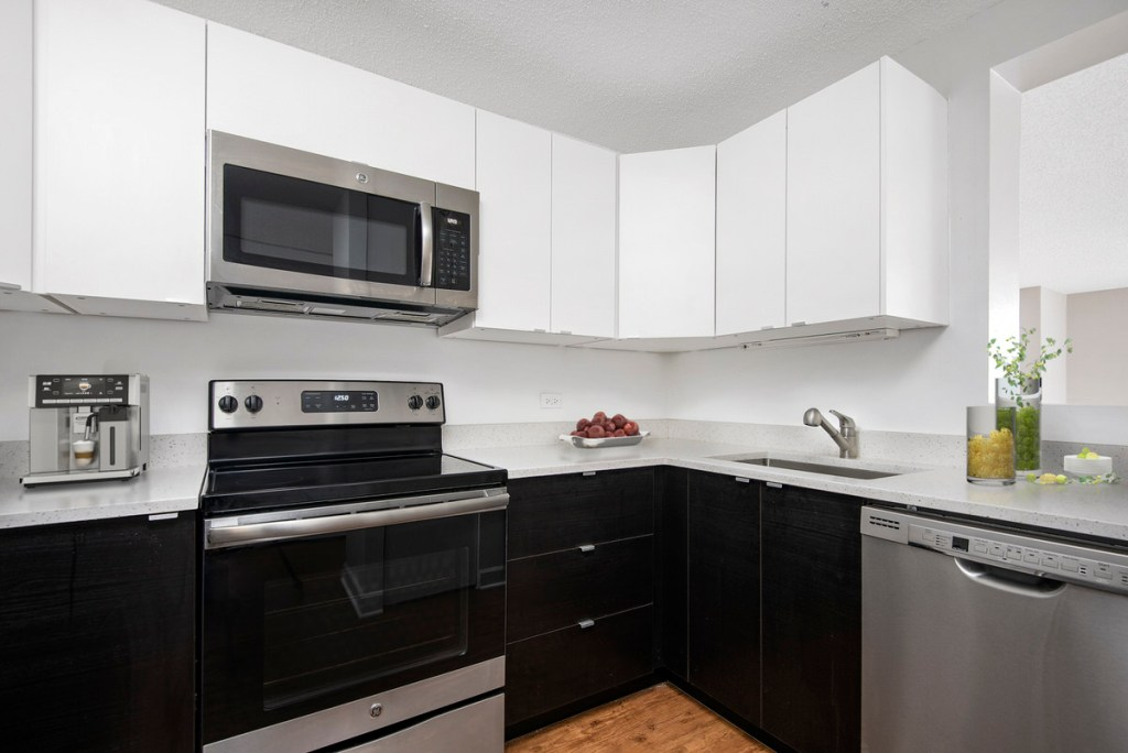 100 W Chestnut Chicago Apartment Interior Kitchen 1