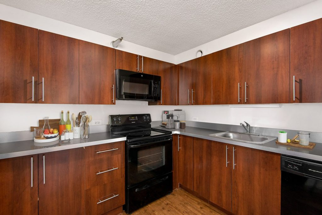 1000 N LaSalle Kitchen Interior Chicago Apartments Gold Coast - 3