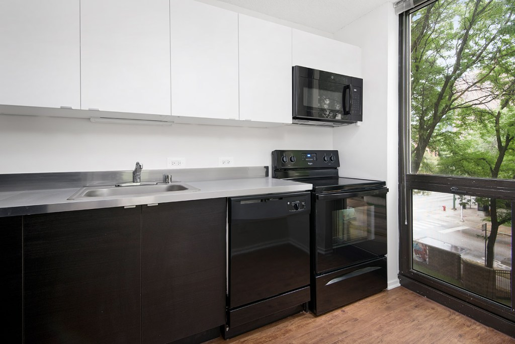 1000 N LaSalle Kitchen with View Interior Chicago Apartments Gold Coast - 1