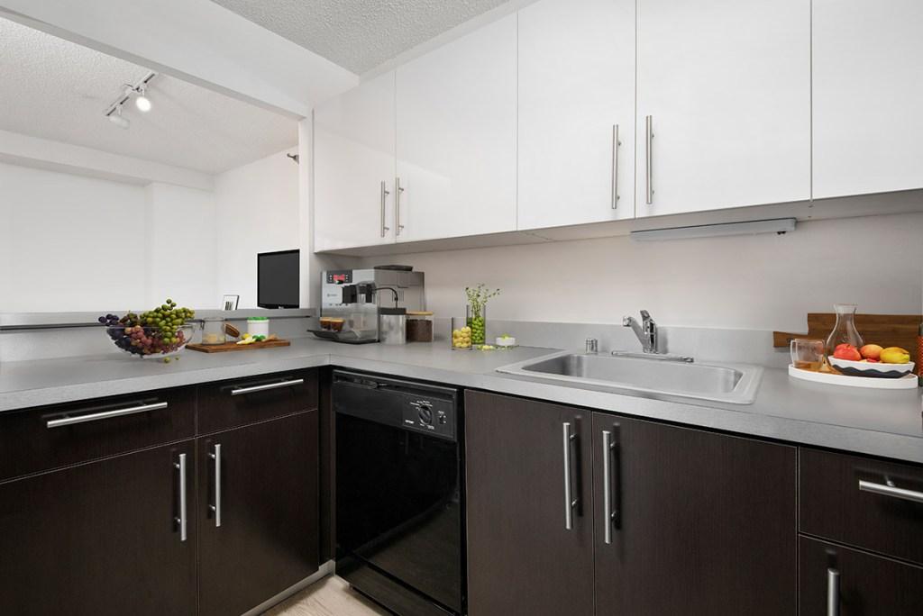 1133 N Dearborn Interior Kitchen Chicago Apartments Gold Coast - 1