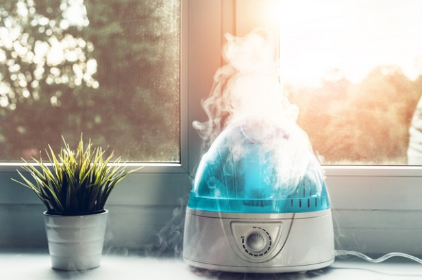 Chicago Apartments, Humidifier Benefits