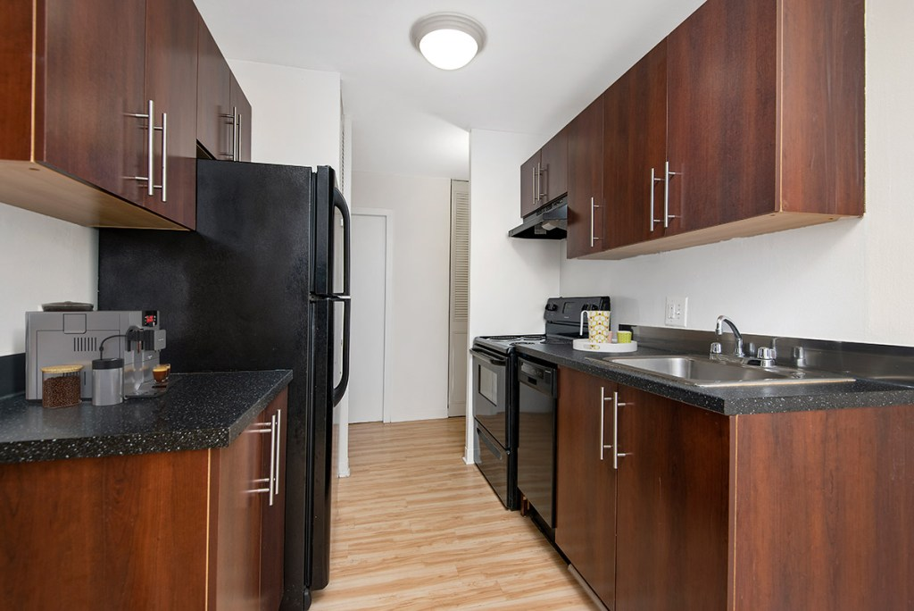 Chicago Apartments, Lakeview, 441 W Oakdale Kitchen