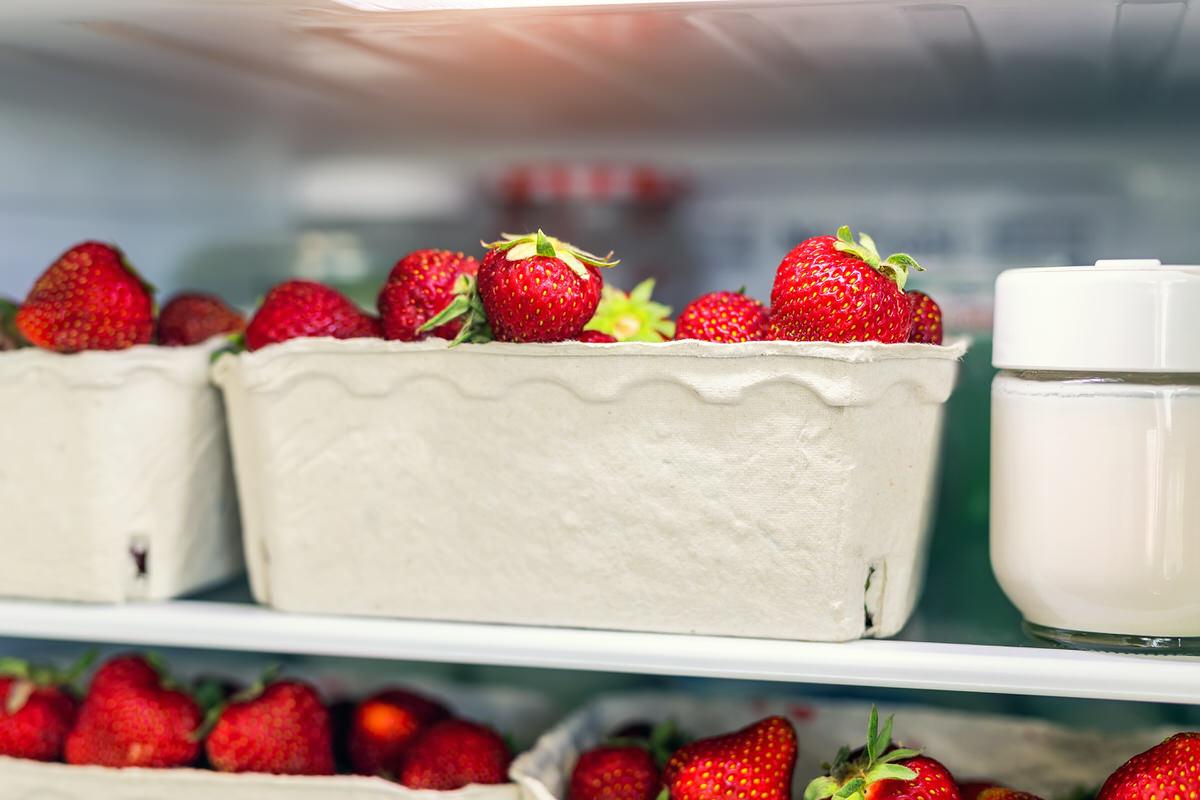 keeping produce fresh, Lake Shore Drive apartments for rent