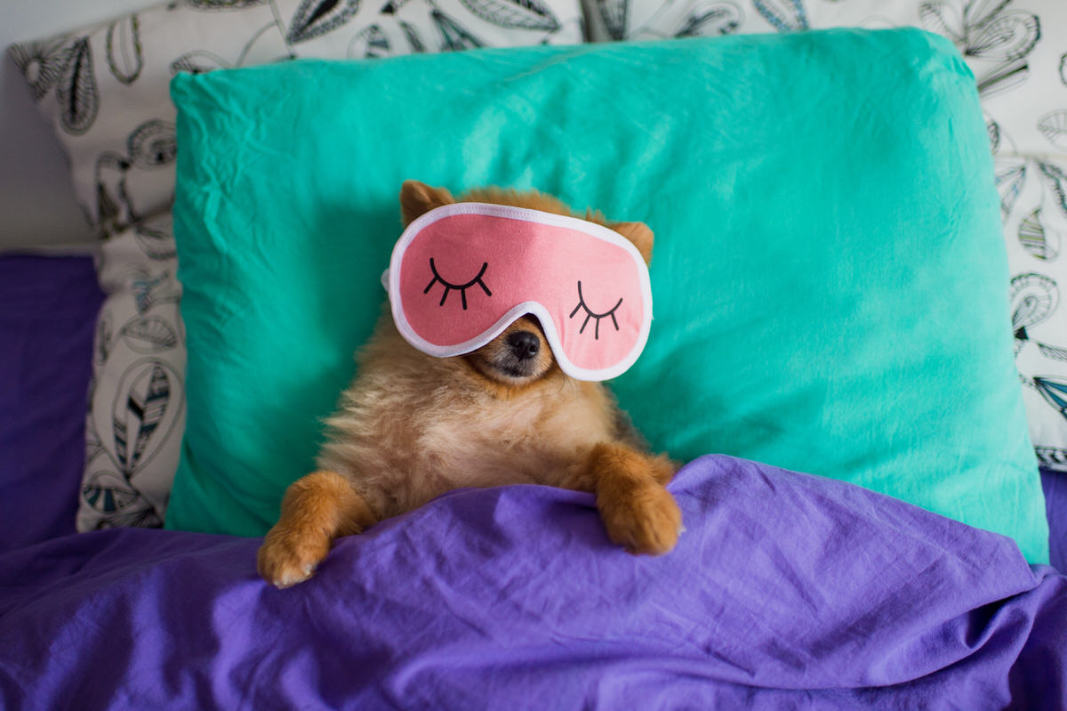 good night of sleep