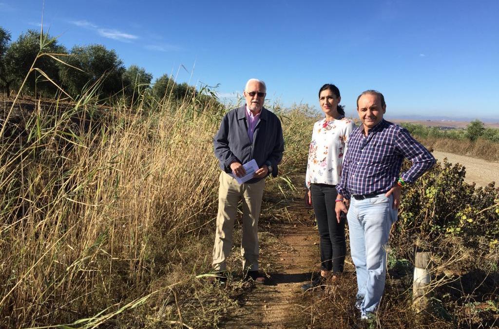 """El PP pide al alcalde socialista """"la inmediata rehabilitación y recuperación de la Vía Verde de la Campiña"""""""