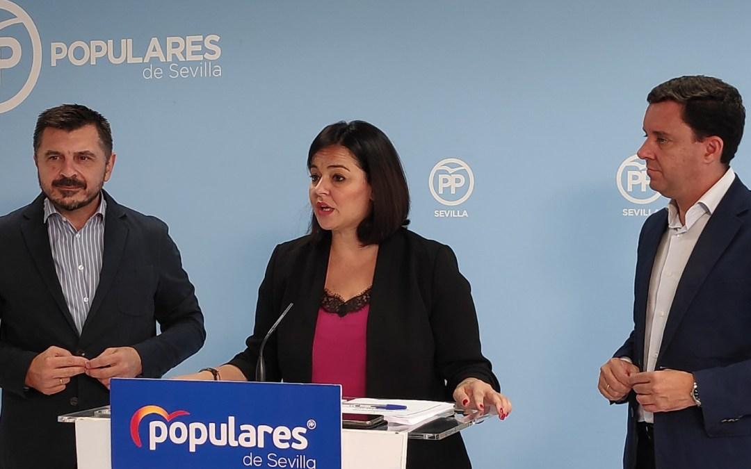El PP destaca unas cuentas sociales, ejecutables, provincializadas y que han salvado muchos proyectos de la provincia que el PSOE puso en riesgo