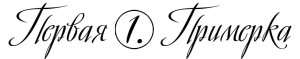Выкройка Simplicity — Топ, Платье, Жакет, Брюки - S2469