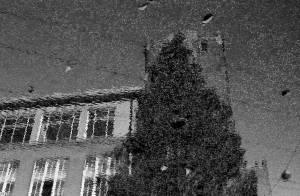 Reflectie in een regenplas. Olympus Trip 35 met Kodak Tri-X 400.