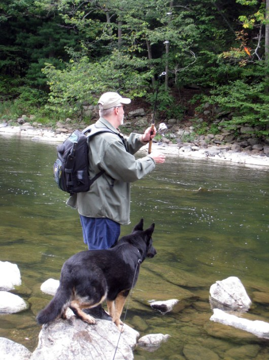 Toby watching out for Trout