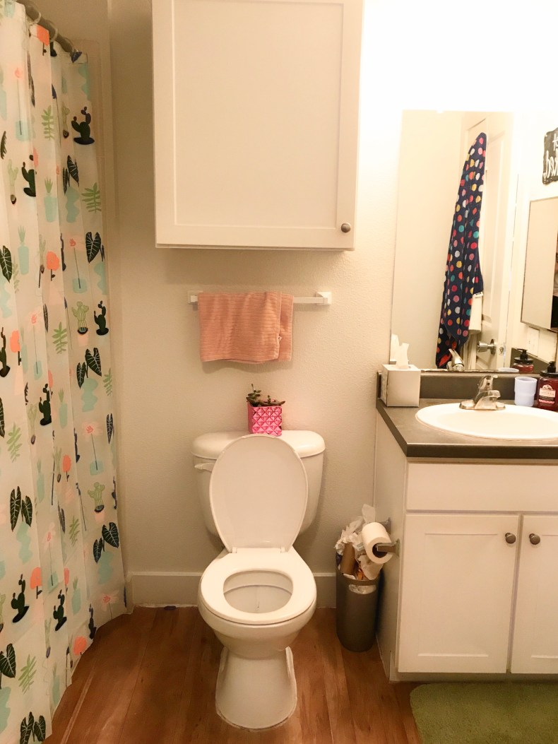 bathroom college apartment