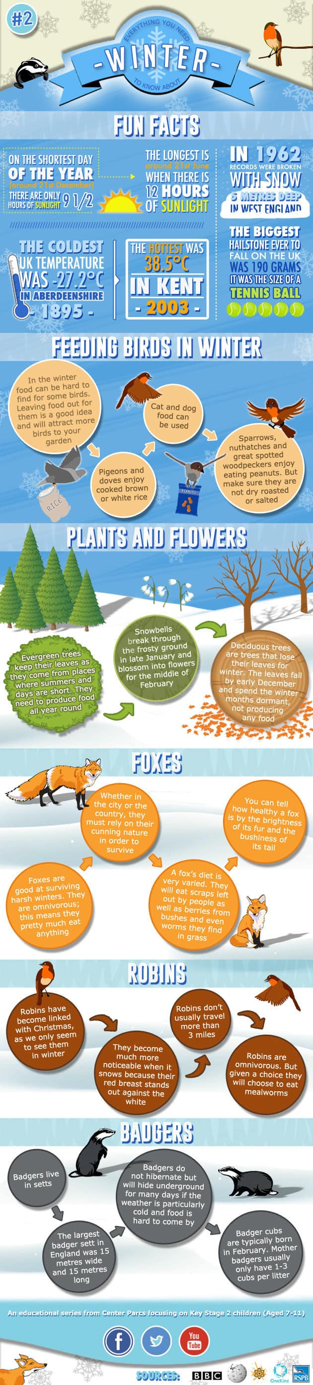 Everything You Need To Know About Winter