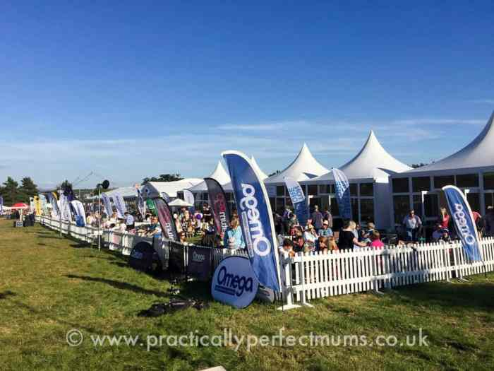 Bristol Balloon Fiesta 2016 Members area
