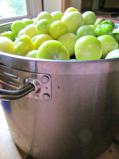 Tomatillos for Canning