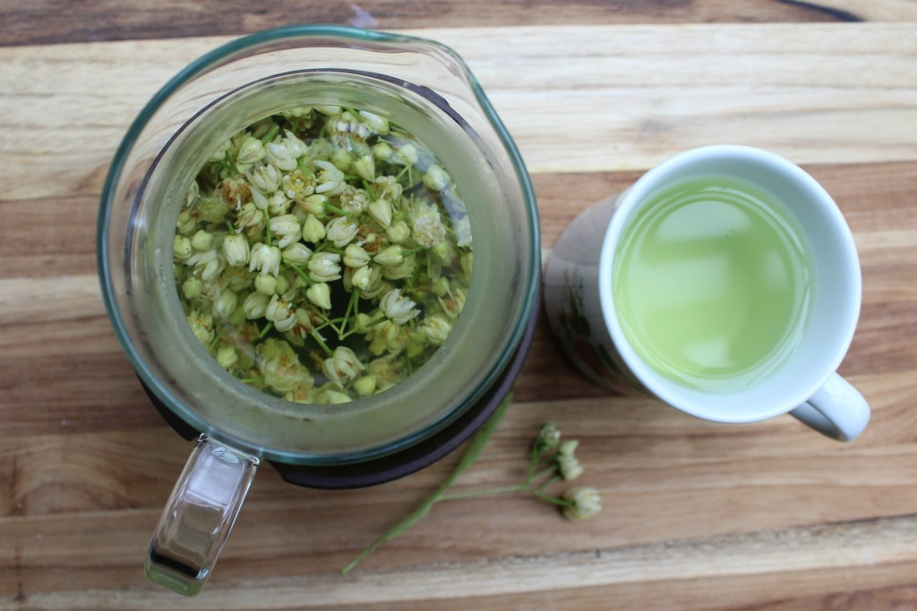 Medicinal Benefits of Linden Tea