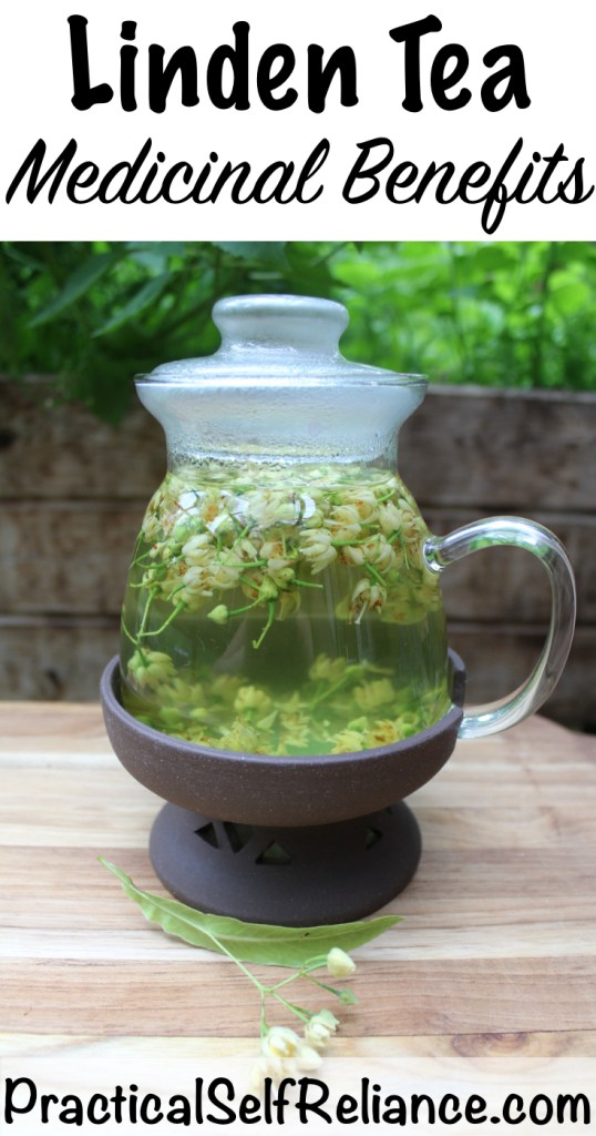 Linden Tea Medicinal Benefits