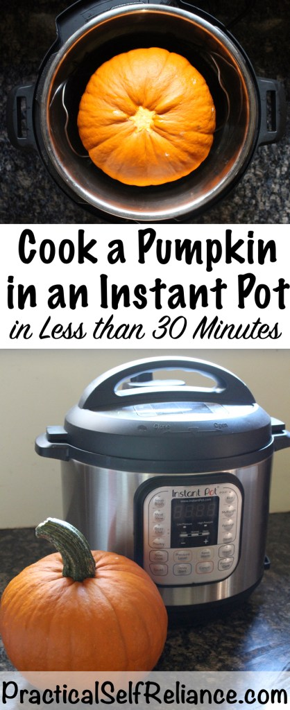How to Cook a Pumpkin in an Instant Pot #pumpkin #puree  #recipes #howtomake #squash #homemade #pie #easy #instantpot #pressurecooker #instantpotrecipes