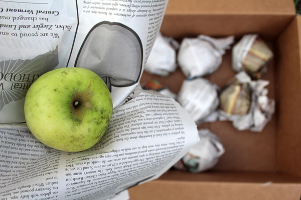 Storing Apples in a Root Cellar