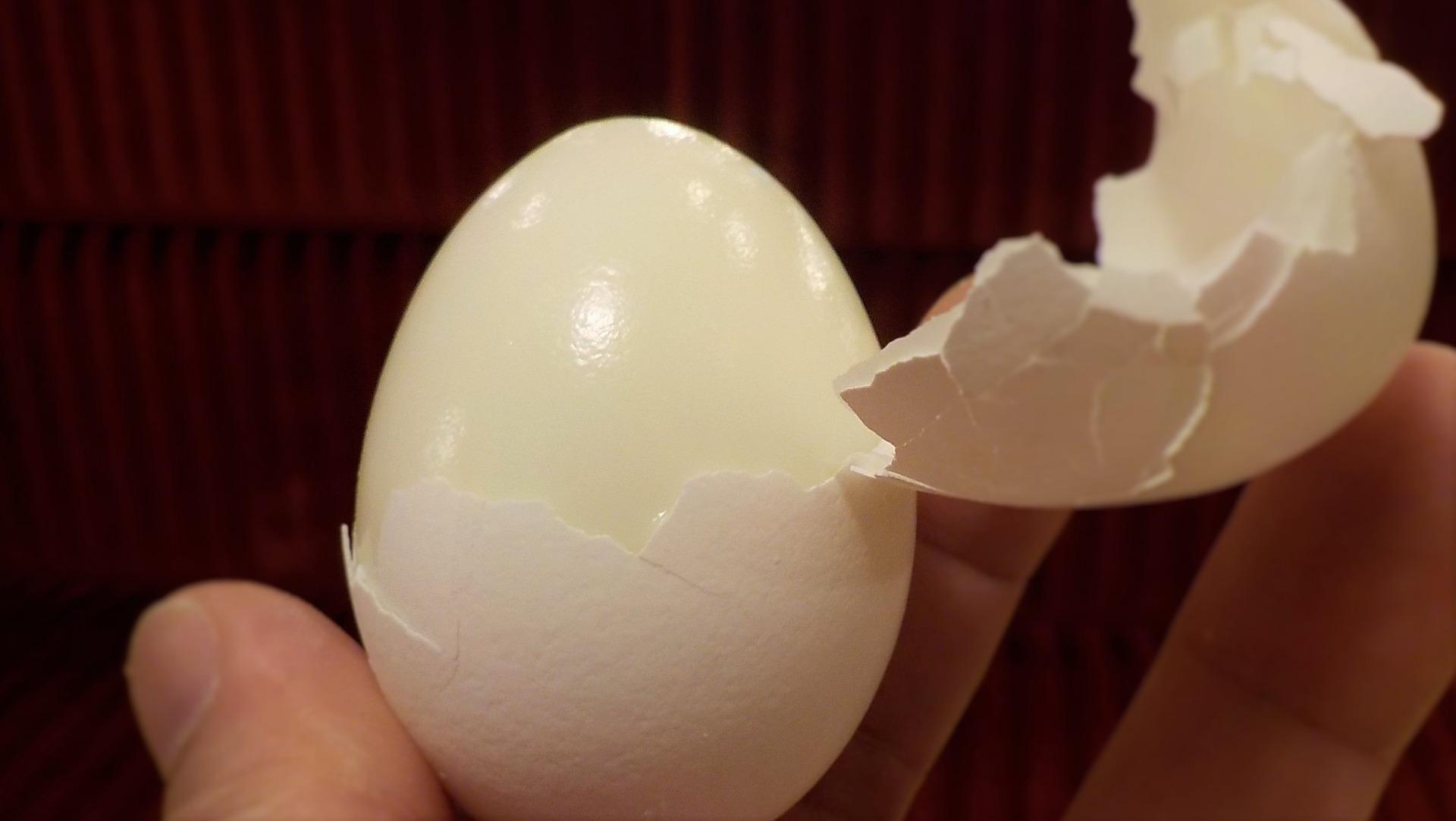 Egg membrane is a powerful anti-inflammatory