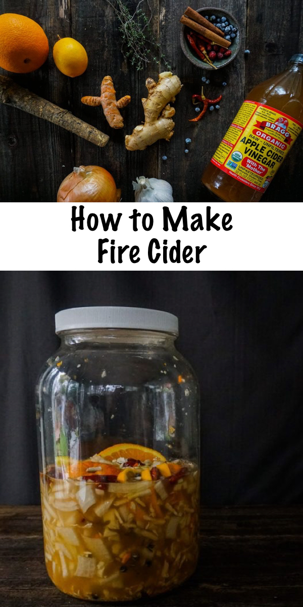 How to Make Fire Cider ~ A folk remedy for just about everything, including the common cold. Fire cider includes common kitchen items and is easy to make at home. #firecider #oxymel #herbs #herbalist #herbalism #medicine #coldandflu #naturalremedy #homestead