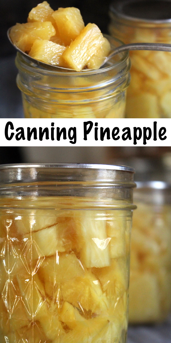 How to Can Pineapple ~ A quick guide to canning pineapple for long term preservation. Homemade canned pineapple tastes much better than store bought, and it's a great way to preserve sale pineapples for later use. #pineapple #pineapplerecipes   #canning #foodpreservation #preservingfood #homestead #selfreliant #selfsufficiency #homesteading