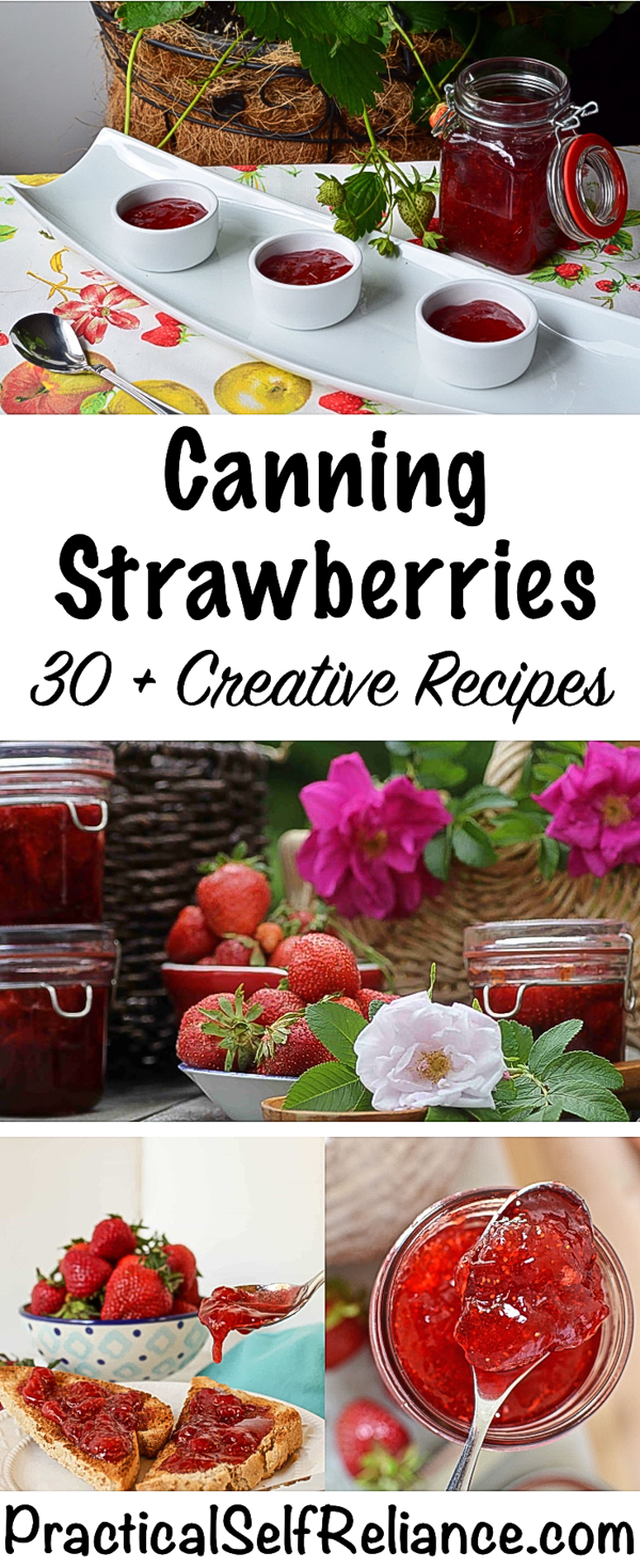 30+ Ways to Can Strawberries - Creative Canning Recipes #strawberies #strawberryrecipes #canning #foodpreservation #preservingfood #homestead #selfreliant #selfsufficiency #homesteading