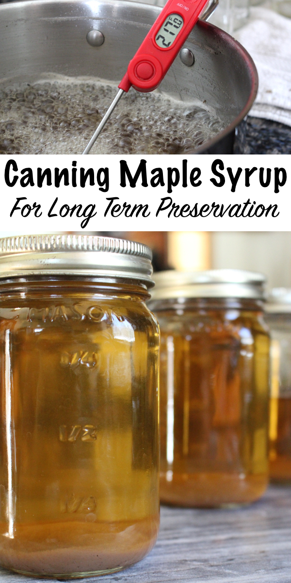 Canning Maple Syrup for Long Term Preservation ~ A jar or maple syrup can last 50+ years if properly canned and stored. You can preserve your own homemade syrup or can up store-bought maple syrup. Either way, canning maple syrup is a great way to preserve maple syrup right on the pantry shelf. #maplesyrup #canning #foodpreservation #homesteading #selfsufficiency #naturalsweetener