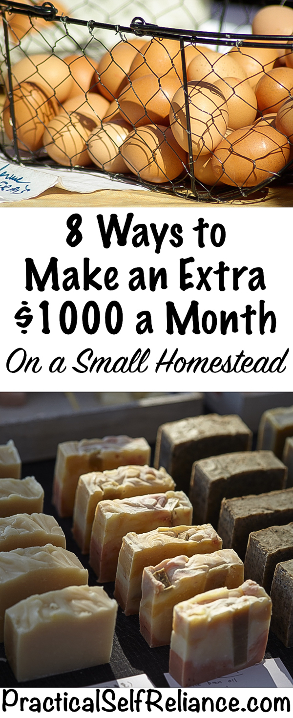 8 Ways to Make an Extra $1000 a Month on a Small Homestead #workfromhome #selfemployed #onlinebusiness