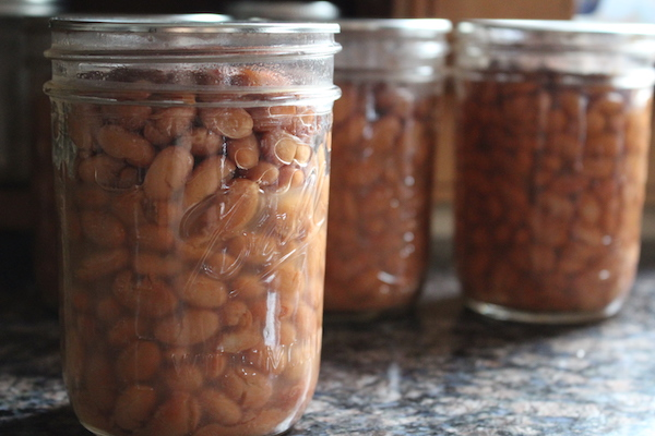 Canning Pinto Beans