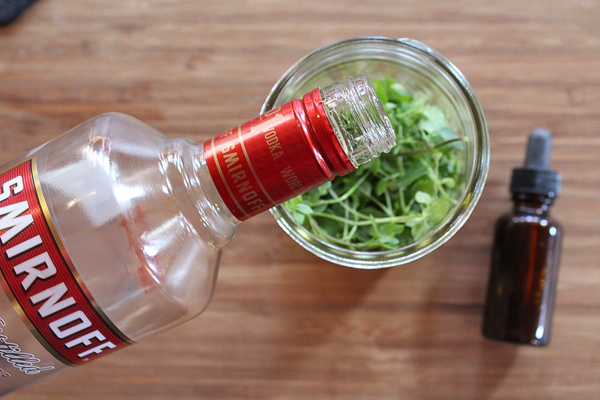 How to Make Chickweed Tincture