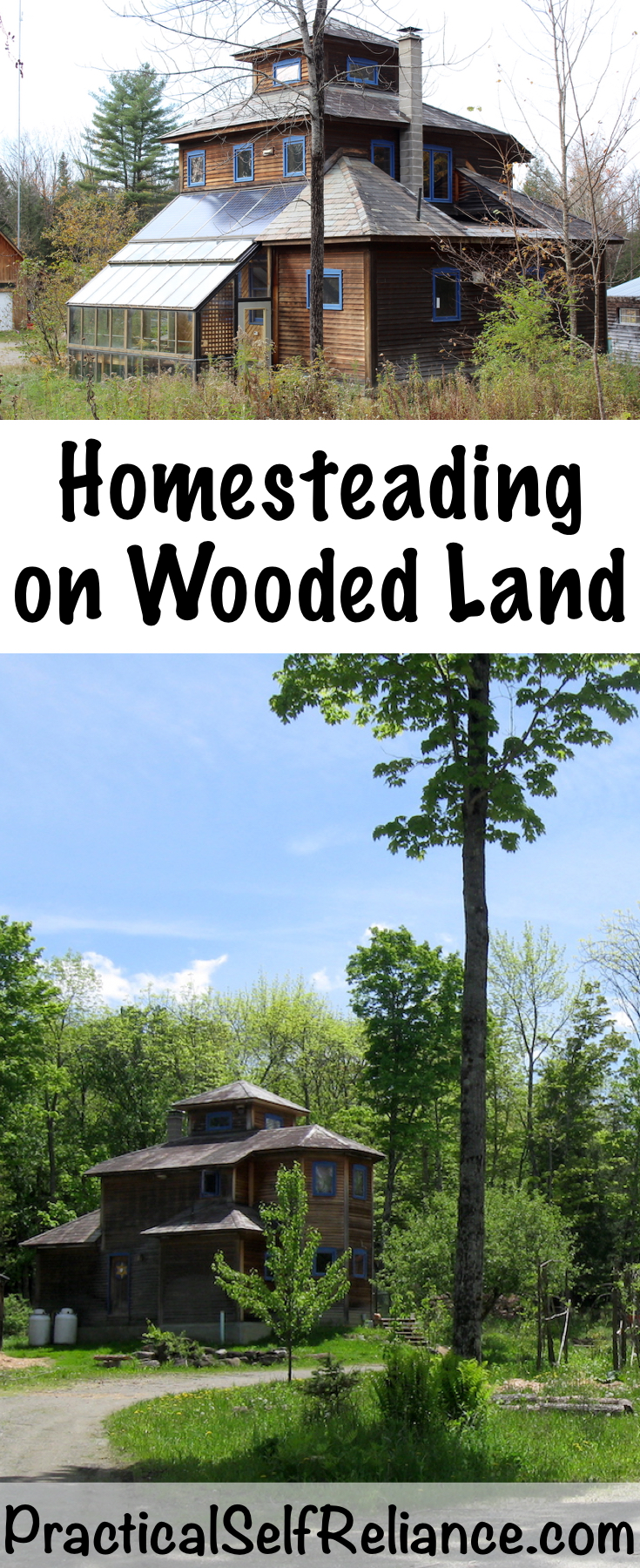 Homesteading On Wooded Land