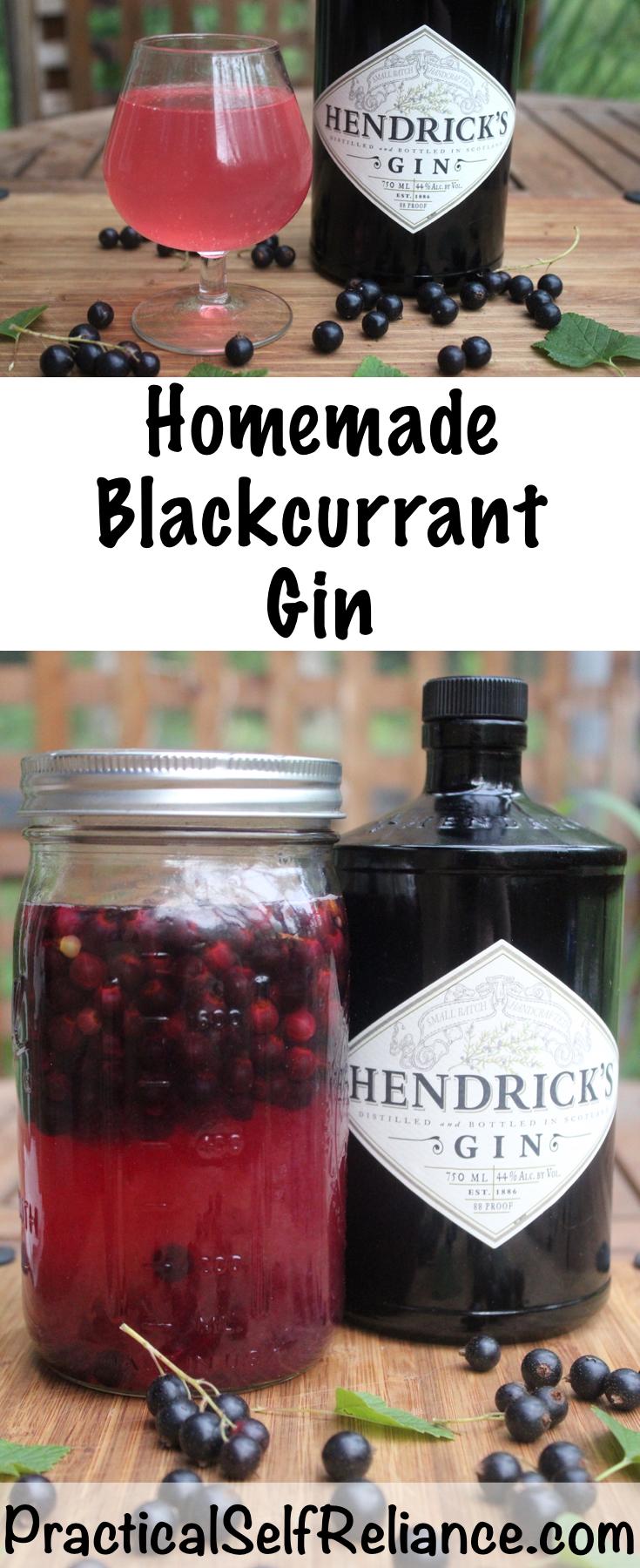 Homemade Blackcurrant Gin #currants #recipes #howtouse #blackcurrants #currant #gin #drinks #beverages #cocktail