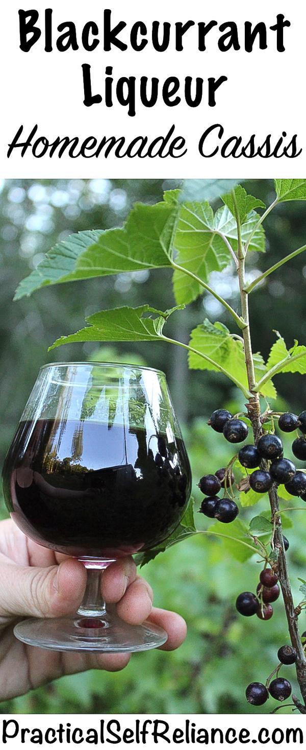 Homemade Blackcurrant Liqueur ~ DIY Cassis Recipe #blackcurrant #currant #currantrecipes #liqueurrecipes #foraged #orchard #berryrecipes #cocktails #fruitcocktails
