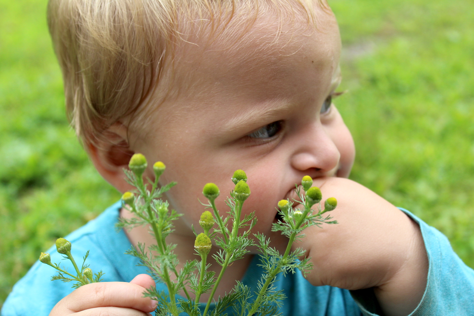 Pineapple Weed Eating Baby