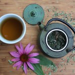 How to Make Echinacea Tea