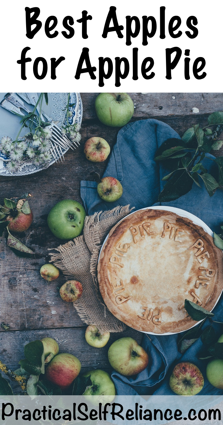 Best Apples for Apple Pie ~ Best Pie Apple Varieties #apples #applepie #food #fallrecipes #orchard #permaculture #homesteading