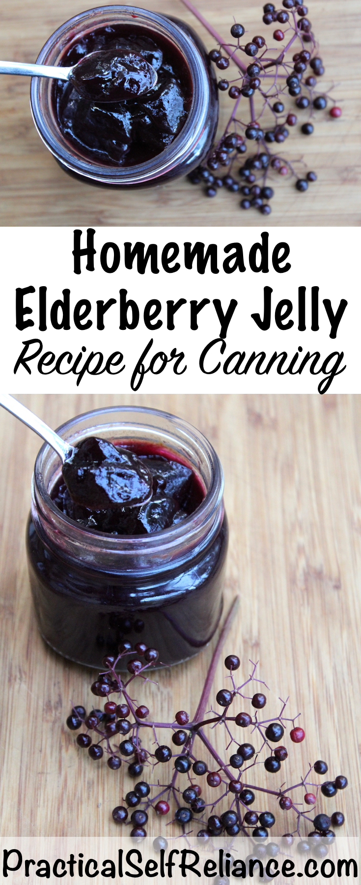 Elderberry Jelly Recipe for Canning #elderberry #recipe #canning #foodpreservation #jellyrecipes #elderberrysyrup  #herbalism #foraging #wildcrafting #wildedibles