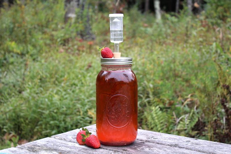 Homemade Strawberry Wine