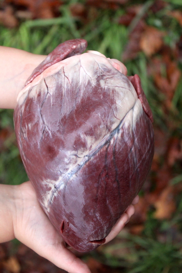 How to Cook Deer Heart