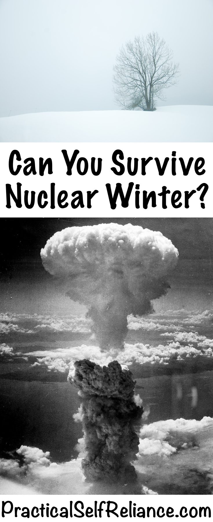 Can you survive a nuclear winter? #nuclear #survival #shtf #preparedness #prepper #selfsufficiency