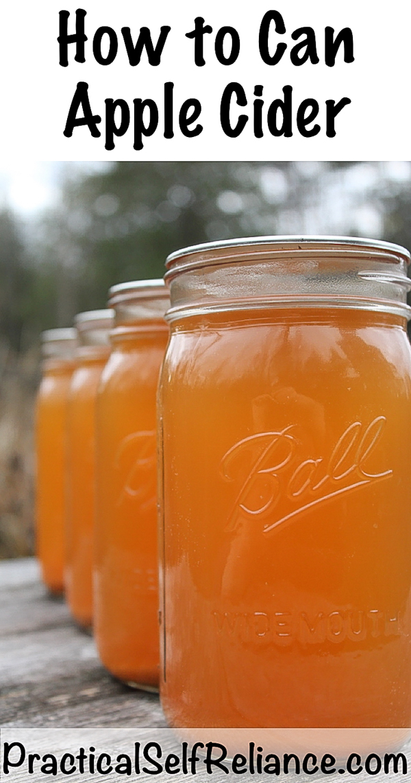 How to can apple cider ~ Canning apple juice for long term storage #applecider #canning #foodpreservation #foodstorage #homesteading #preparedness