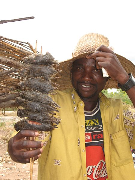 food vendor selling mice in Malawi