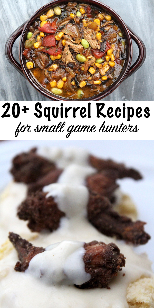 20 + Squirrel Recipes for Small Game 20 + Squirrel Recipes for Small Game Hunters ~ Wild Game Recipes #squirrel #recipe #howtocook #wildgame #hunting #survivalist #prepper #homesteading